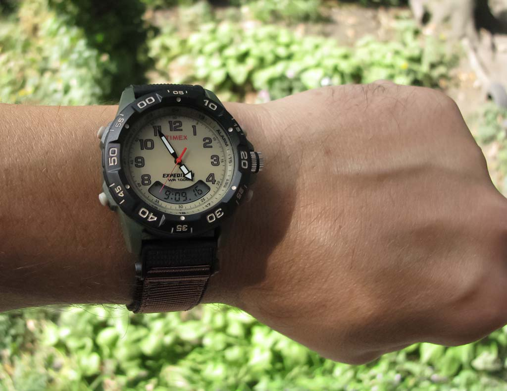 Timex Expedition T45181 watch